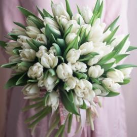 Охапка белых тюльпанов перевязанные лентой